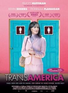 O fenômeno e os travestis
